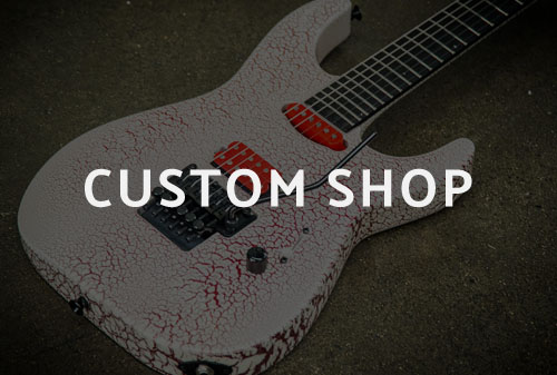Custom Shop Series